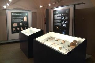 Una exposición de la Cueva de El Conejar en Cáceres contiene restos de animales ya desaparecidos en Extremadura