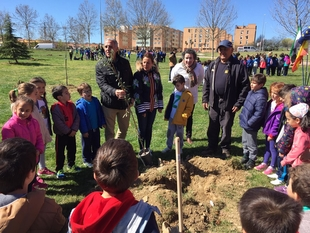 El Ayuntamiento y DOCU plantan 300 árboles en las inmediaciones de Maltravieso