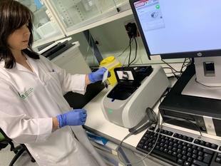 Microbiología de Cáceres implanta una nueva técnica que permite diagnosticar infecciones graves en sólo una hora
