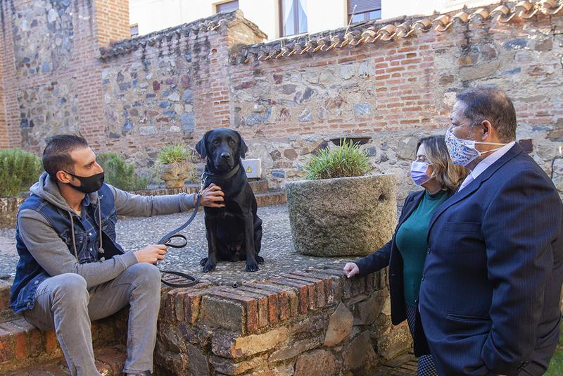 La Diputación cacereña pone en marcha un programa piloto de terapia con perros adiestrados para víctimas de violencia de género