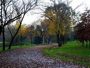 El Ayuntamiento cerrará mañana los parques debido a la alerta meteorológica y aplaza la apertura de la ampliación del Parque del Príncipe