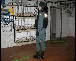 """La Guardia Civil desmantela en Miajadas una instalación de cultivo y producción """"Indoor"""" de marihuana y detiene a un joven de 19 años"""