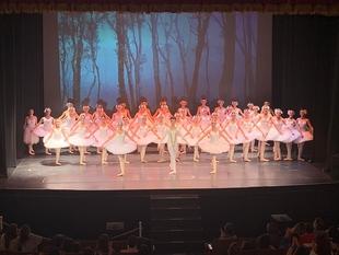 El Gran Teatro celebra mañana el Día Internacional de la Danza con Odette y Odile, una adaptación de El lago de los cisnes