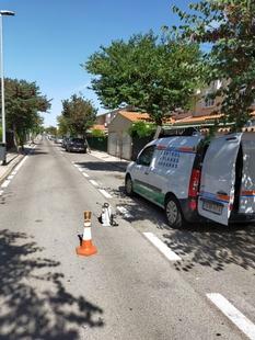 El Ayuntamiento lleva a cabo labores de control de cucarachas y otros insectos que proliferan en las zonas públicas debido al calor