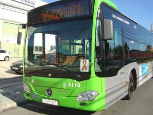 El Ayuntamiento de Cáceres mejorará la accesibilidad de 15 paradas de autobuses urbanos con una inversión de casi 100.000 euros